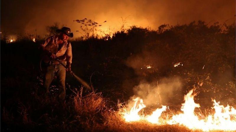 Incêndios no Pantanal: porque o fogo ainda ameaça o ecossistema mesmo com a chegada das chuvas