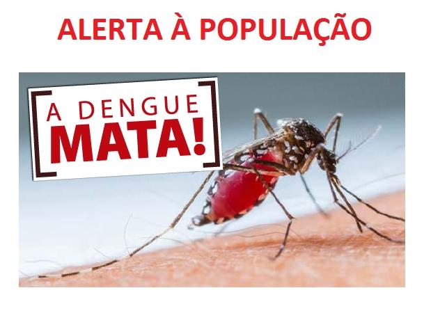 Aedes aegypti: aumento no número de focos