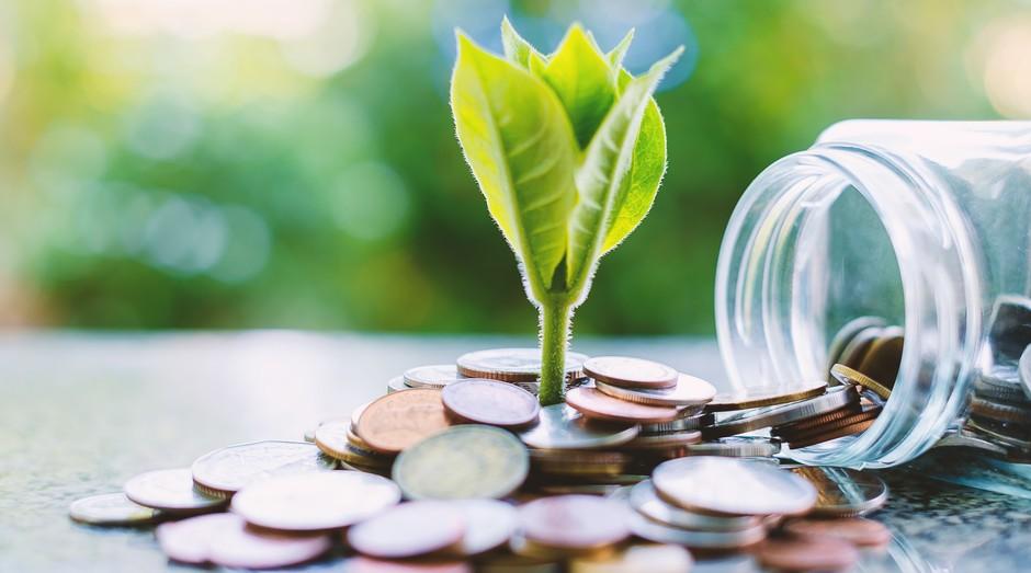Sustentabilidade nos negócios, por Carlos Chiodini