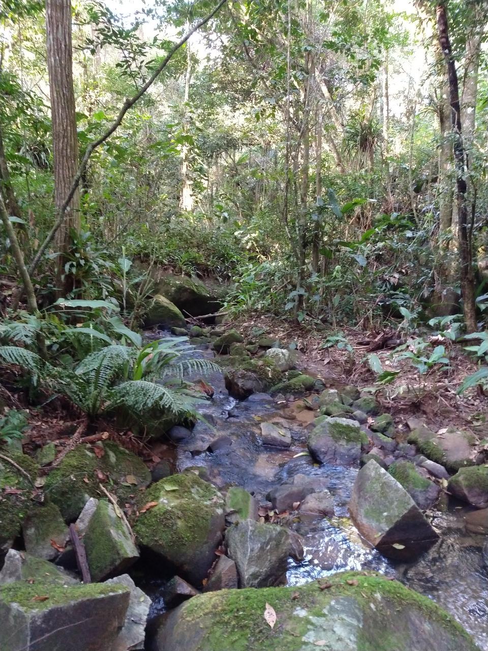 Balneário Camboriú: Cuidar da água é responsabilidade de todos