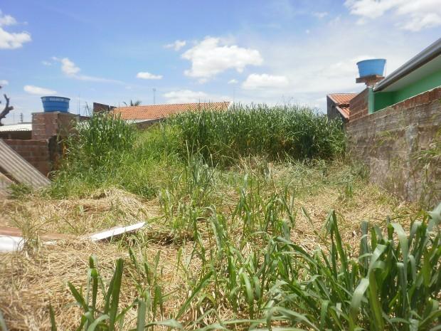 Balneário Piçarras: denúncias para limpeza de terrenos cresce depois de notificação da Prefeitura