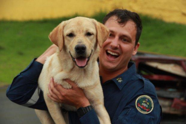 Binômio: CBMSC tem mais uma dupla formada por bombeiro e cão certificada