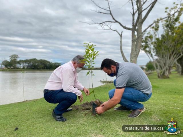Dia do Meio Ambiente: Plantio de árvores nativas em áreas verdes de Tijucas celebra a data