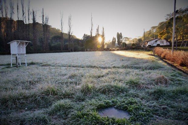 Frio intenso: Epagri recomenda práticas para mitigar prejuízos nos cultivos