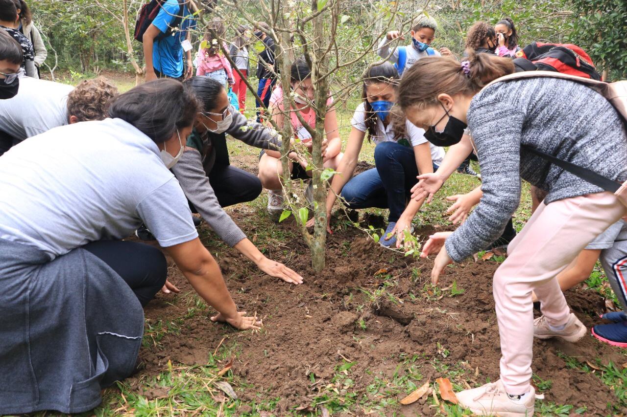 <em>Dia da árvore: Floram planta mais de 3 mil árvores nativas por ano através de projetos de gestão ambiental</em>